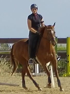 July Canter 3.JPG