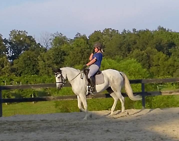 sweaty one handed canter.jpg